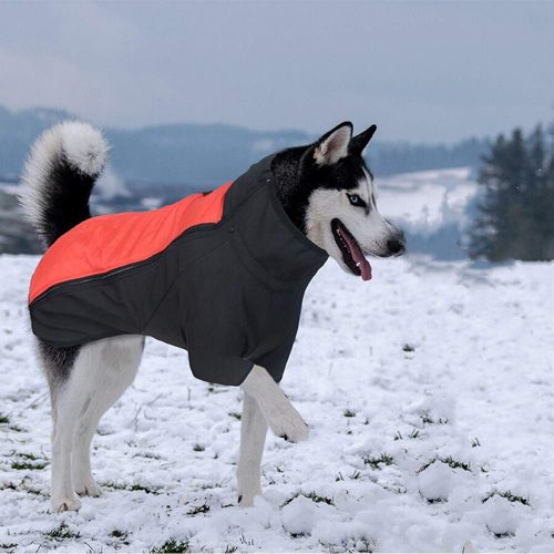 Dr.NONO Dog Jacket Thick Warm Winter Coat