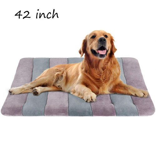 JoicyCo Dog Beds Crate Pad Mat