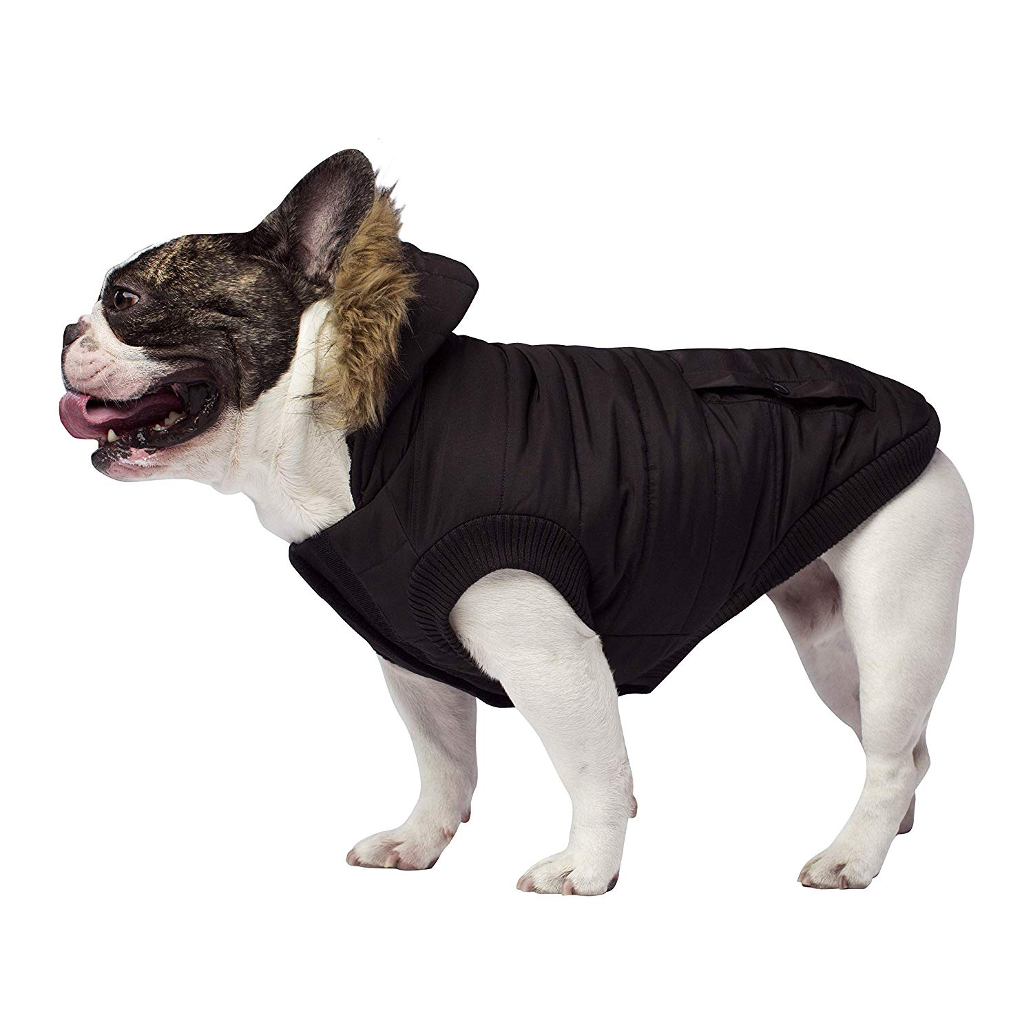Canada Pooch Water-Resistant Insulated Dog Jacket