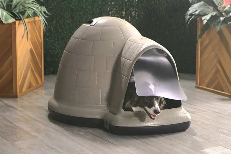 large igloo dog houses