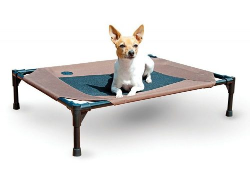 K&H Pet Pet Products Original Pet Cot, Elevated Dog Bed