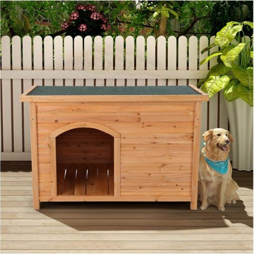 Dog House Outdoor