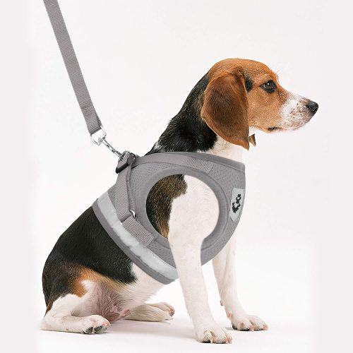 GAUTERF Dog and Cat Universal Harness