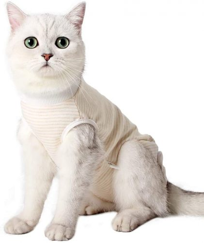 Heywean Cat Professional Surgical Recovery Suit