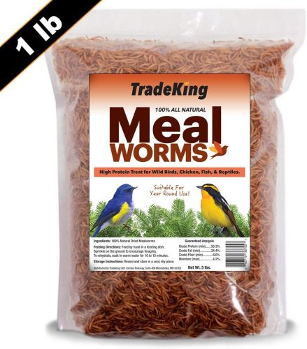 TradeKing 1 lb Dried Mealworms