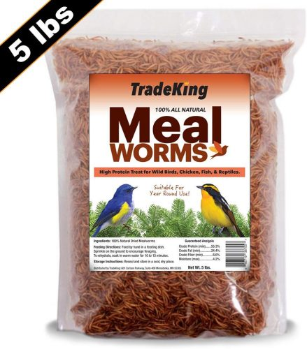 TradeKing 5 lb Dried Mealworms