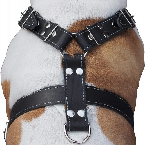 Dogs My Love Black Genuine Leather Dog Harness