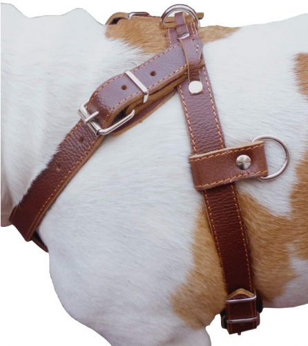 Dogs My Love Leather Dog Pulling Walking Harness Large