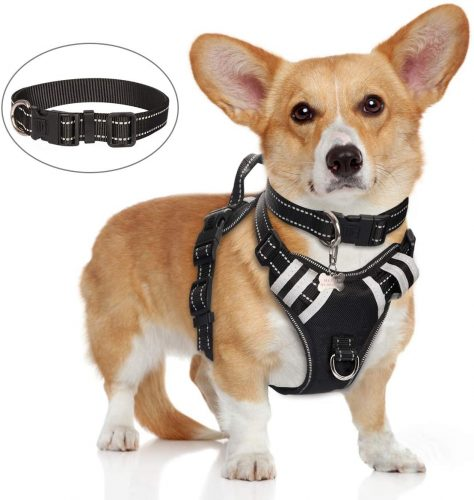 WINSEE Dog Harness No Pull