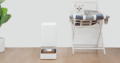 Advantages and Disadvantages of Using Smart Pet Feeder? | smart pet feeders