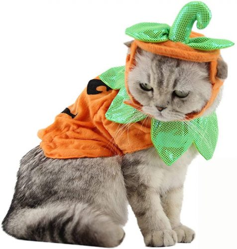 Bolbove Pet Pumpkin Costume for Cats & Small Dogs