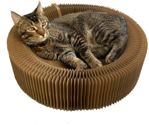 BobbyPet Cat Scratcher Lounge Bed