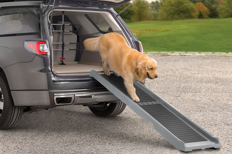 Dog Ramp For Truck
