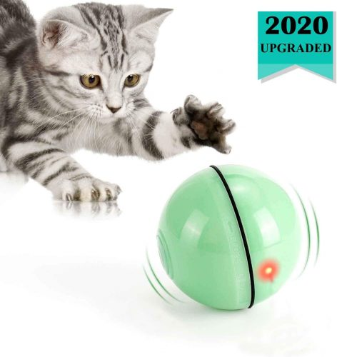 WWVVPET Interactive Cat Toys Ball