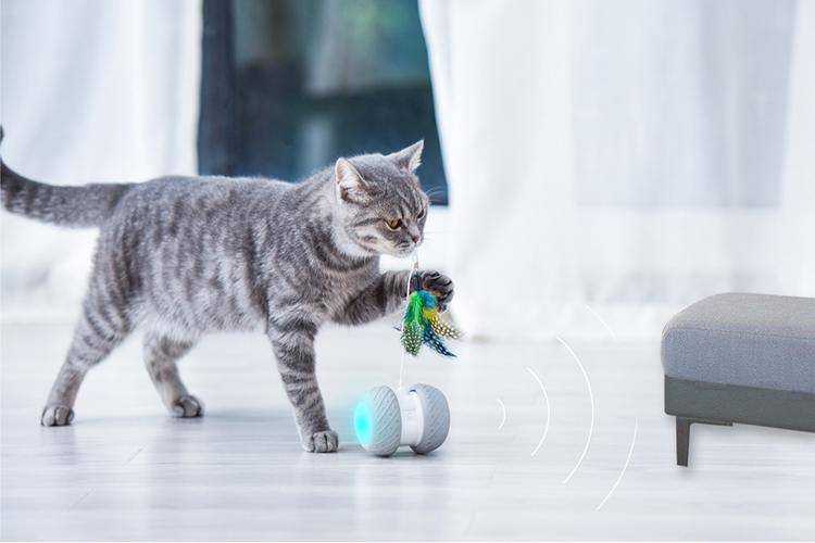 Battery Operated Cat Toys