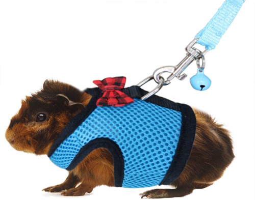 RYPET Guinea Pig Harness and Leash - Hamster leashes