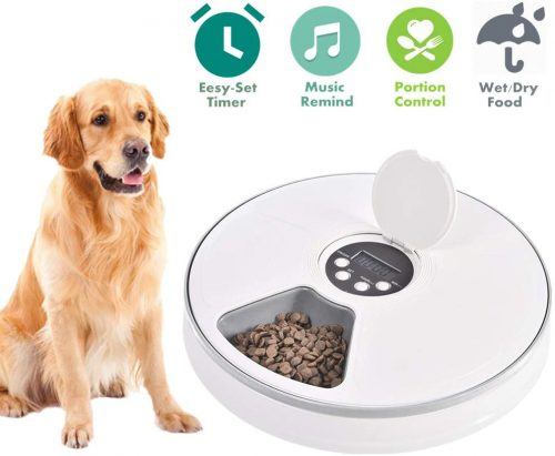 6. Automatic Pet Feeder for Cats Dogs Rabbits & Small Animals