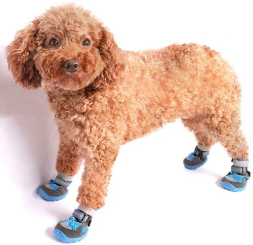 all4canid Breathable Dog Boots, Dog Hiking Shoes | Dog Shoes for Hiking
