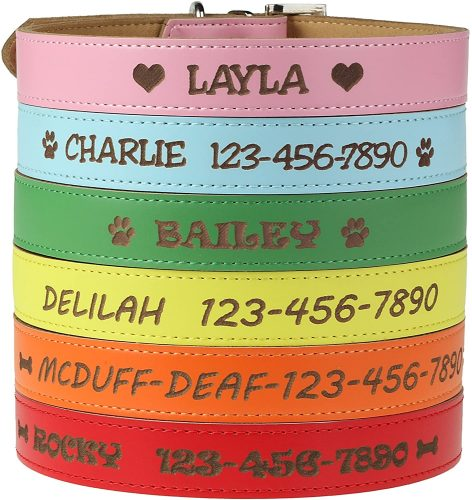 Custom Catch Personalized Dog Collar | Embroidered Dog Collar