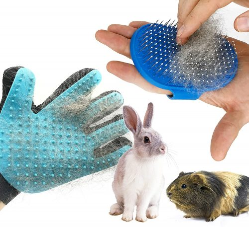 Dasksha Rabbit Grooming Kit with Rabbit | bunny supplies