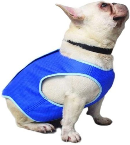 HonorBoard Cool Coats for Dogs | Cool Coats for Dogs