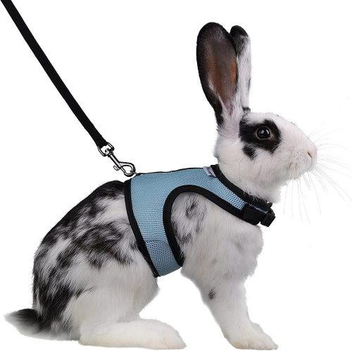 Niteangel Adjustable Soft Harness | bunny supplies