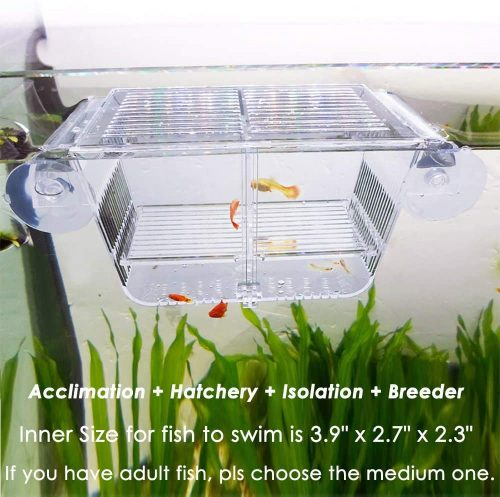capetsma Fish Breeding Box | breeding boxes