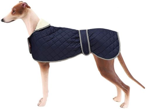 Warm Thermal Quilted Greyhound Coat- Greyhound Dog Coats