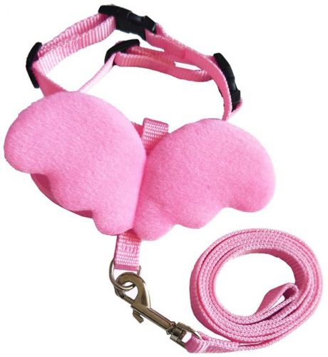 Easyinsmile Pet Leashes and Harness | Rabbit Leashes