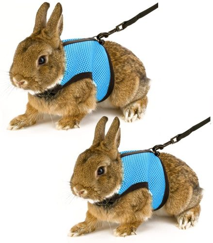 Calunce Soft Rabbits Harness with Leash | Rabbit Leashes