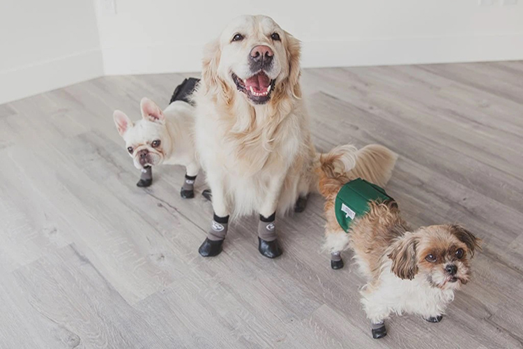 Non Slip Booties For Dogs