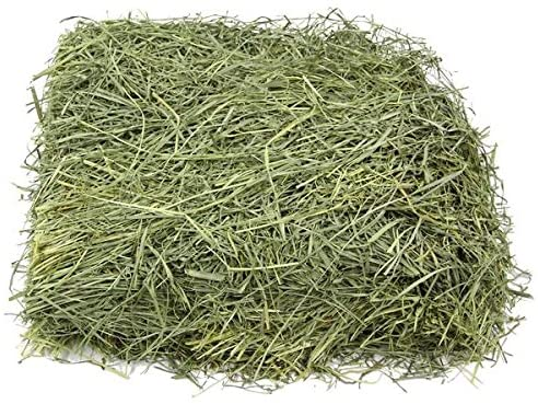KMS Hayloft Premium Bluegrass Hay for Small Animals| Hay For Rabbits