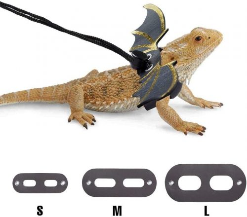 CHICKUSTORE Bearded Dragon Harness and Leash   Bearded Dragon Harness