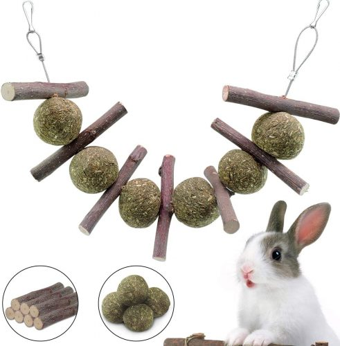 Bunny Chew Toys for Teeth, Natural Organic Apple| Bunny Chew Toys