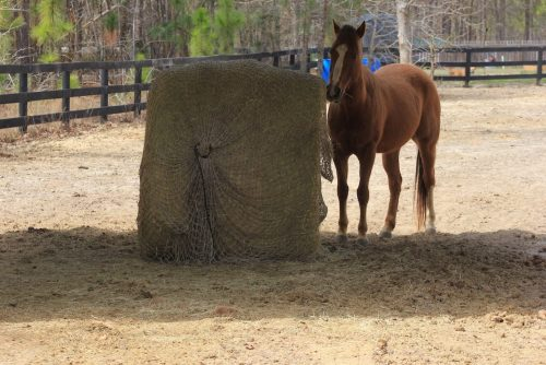 Freedom Feeder Round Bale Hay Net | Hay Ring