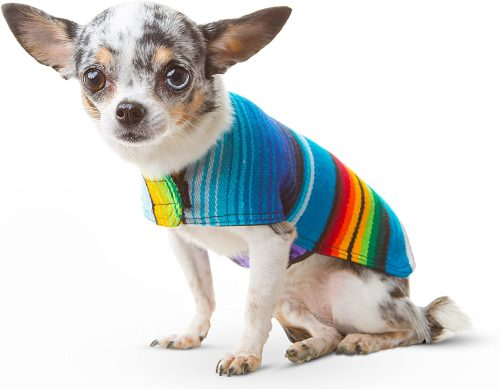 Handmade Dog Poncho from Mexican Serape Blanket | Teacup Dog Clothes