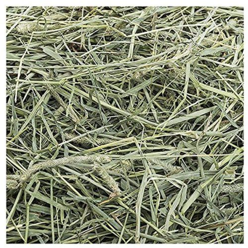 """Small Pet Select 1St Cutting """"High Fiber""""