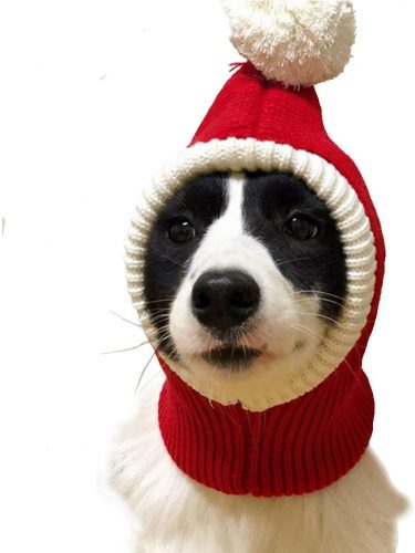 Lessbad Lifeunion Funny Dog Cat Knitted Beanie Hat | Winter hats for dogs