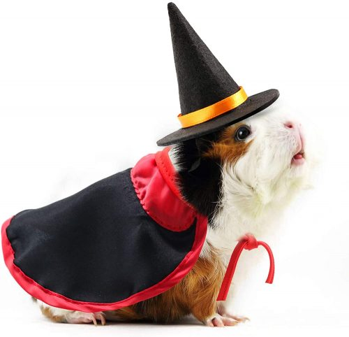 RYPET Guinea Pig Costumes | Guinea Pig Christmas Costumes