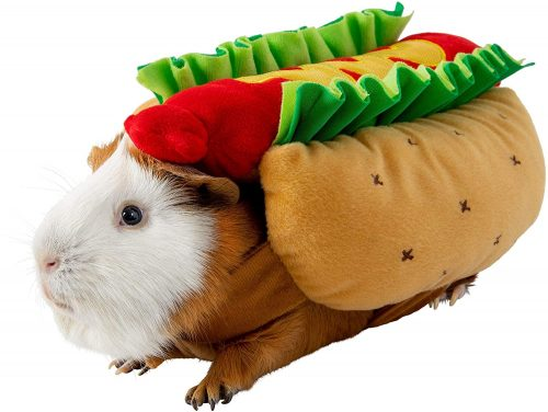 Thrills & Chills Hot Dog Holiday Costume Clothes | Guinea Pig Christmas Costumes