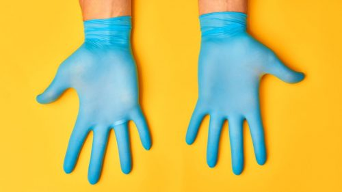 Get latex gloves | How To Keep Your House Clean From Pet?