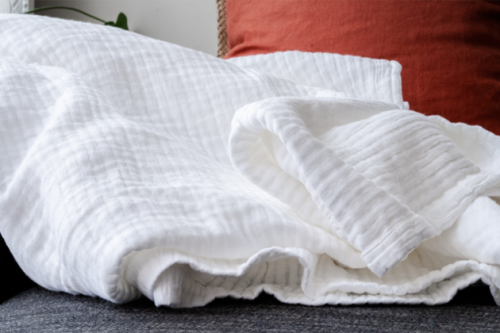 Put blankets everywhere | How To Keep Your House Clean From Pet?