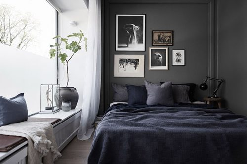 Paint the walls dark   How To Keep Your House Clean From Pet?