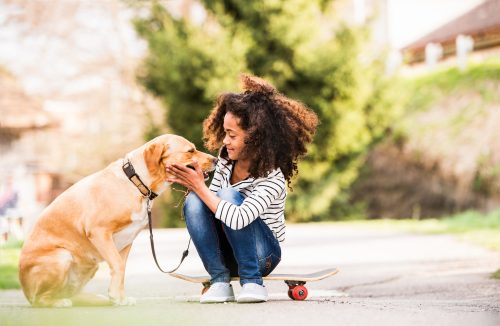 Pets Prevent Your Heart Risks | The Benefits Of Owning A Pet