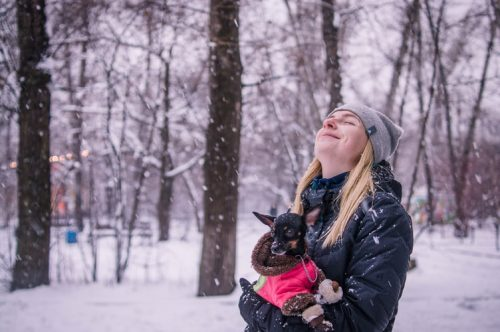 Which is the Best Winter Dog Coat You Can Buy? | Reasons Why Your Dog Should Wear Clothes