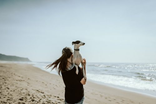 Are You Ready for Commitment | Important Things To Consider Before Getting A Pet