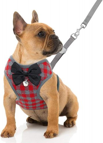 RYPET Small Harness and Leash Set| Mini Pig Harness Leash
