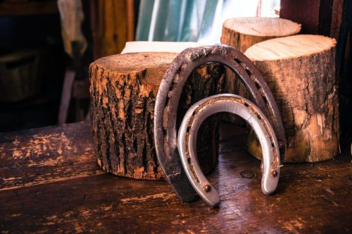 Types of Horseshoes | All You Need To Know About Horseshoes