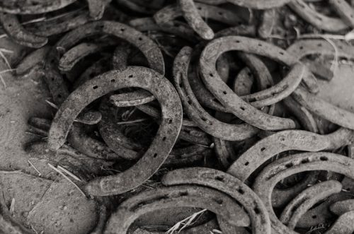 Brief History | All You Need To Know About Horseshoes